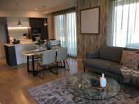 Living & Dining Area Styling